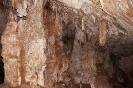 Höhle (Mulu)